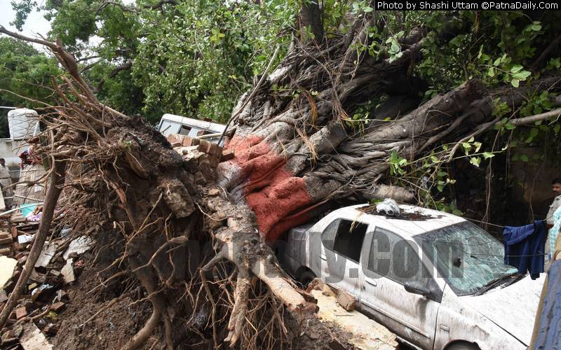 A government vehicle damaged after a tree fell on it inside Patna Police Line.
